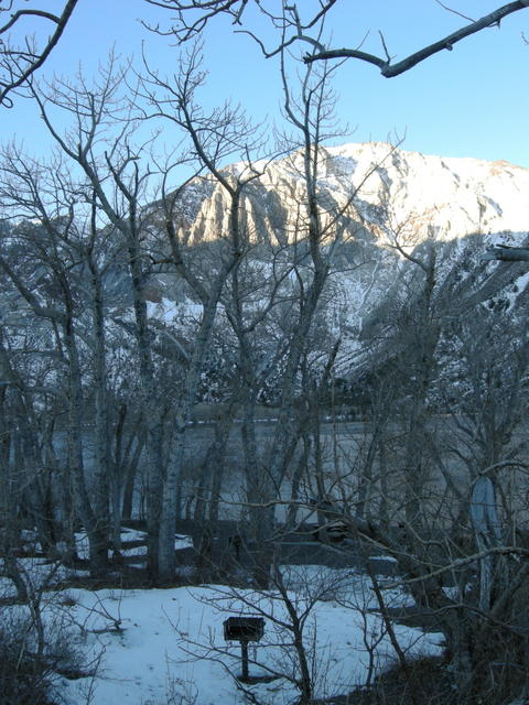 Convict Lake on a January Morning