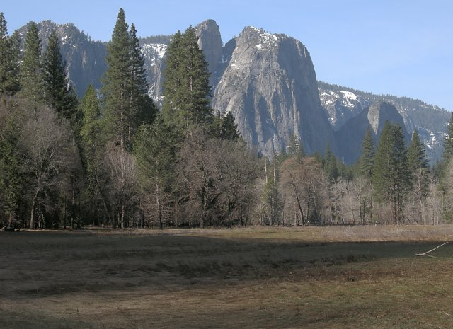 Cathedral Rocks from Sentinel Meadow