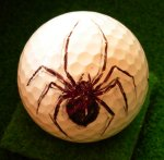 Black Widow Golf Ball
