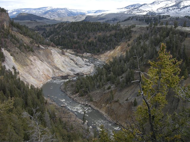 Yellowstone River below Tower Falls