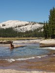 On a Rock in the Tuolumne River