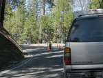 Road Work on Wawona Road