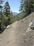 Pacific Crest Trail on Mt. Baden-Powell