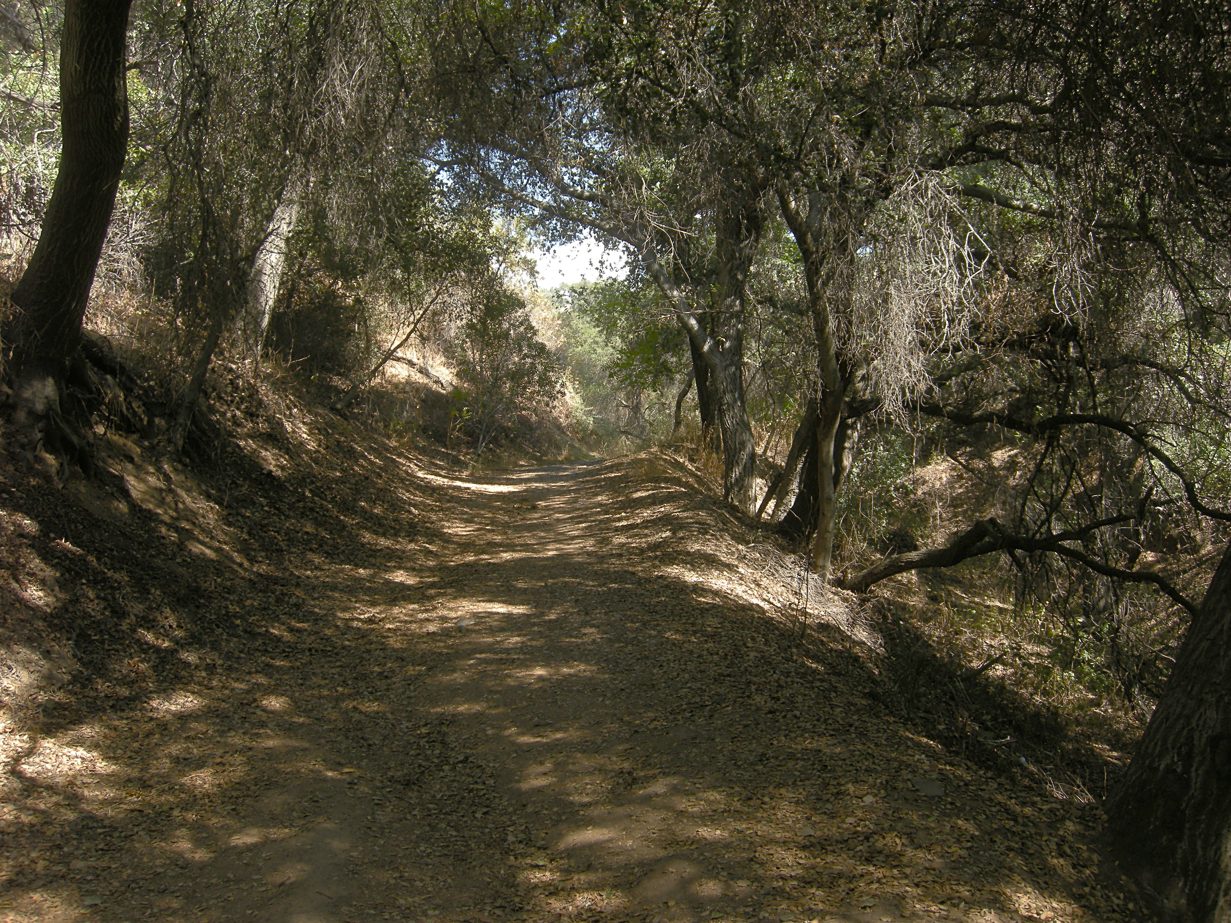 Colby Trail