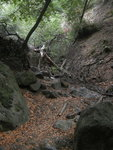 Pavil Canyon Trail