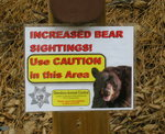 Bear warning