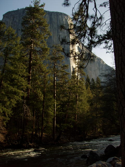Early Morning View of El Capitan