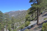 Mount Baldy from the Icehouse Canyon trail