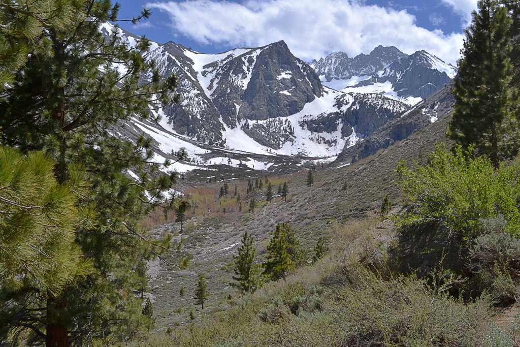 View from trail up First Falls (North Fork of Big Pine Creek)