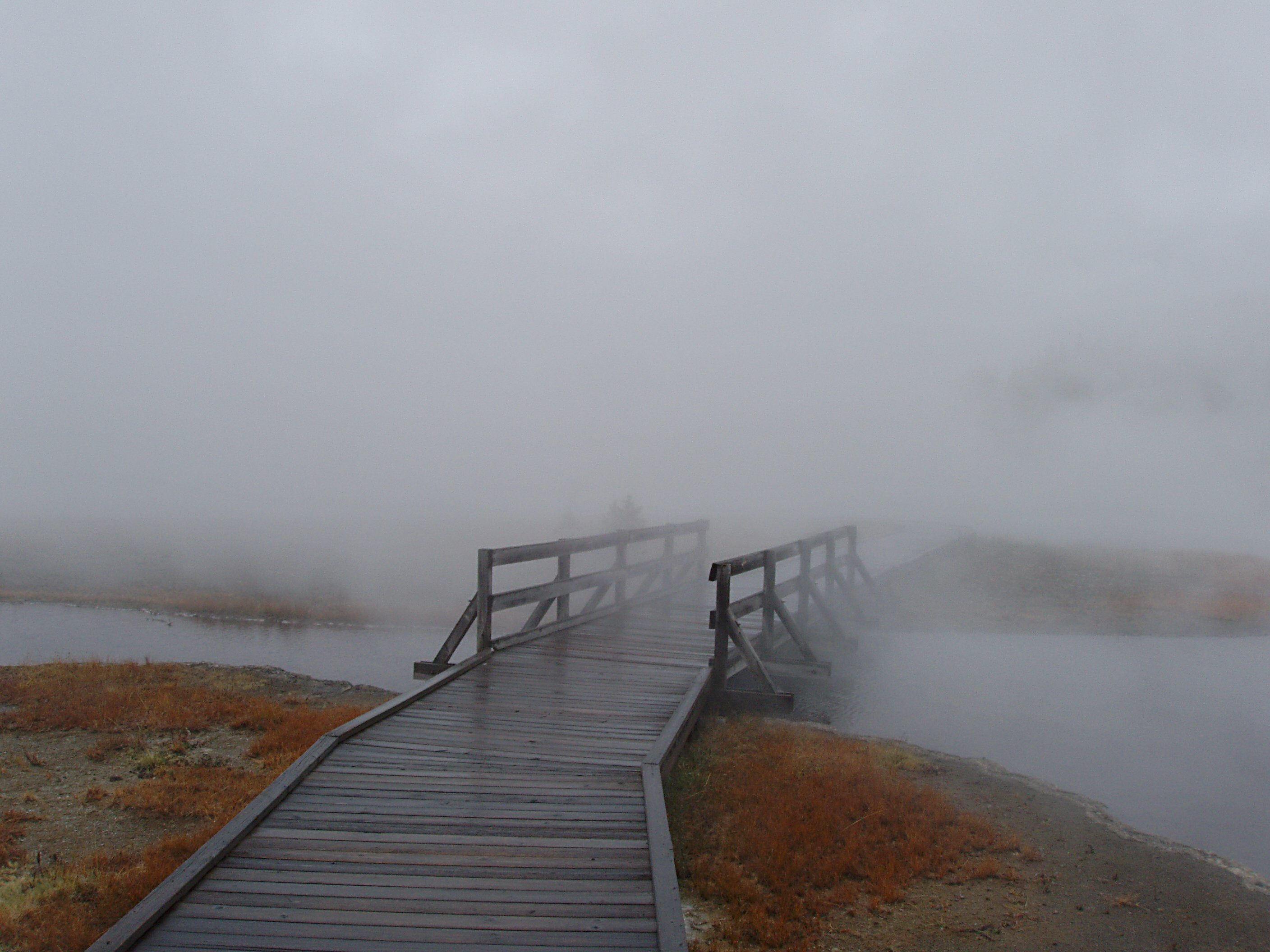 Walkway to Boiling Springs Lake with Fog