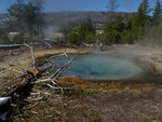 Yet Another Yellowstone Hot Pool