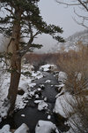 South Fork, Bishop Creek during snow storm
