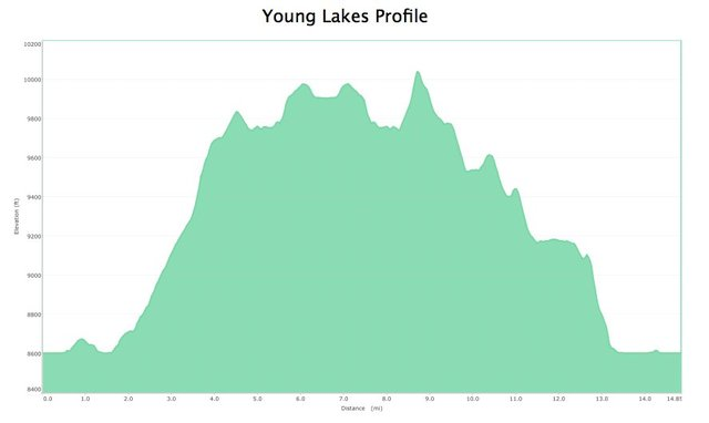 Young Lakes Profile