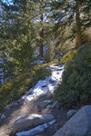 Whitney Trail with snow and ice