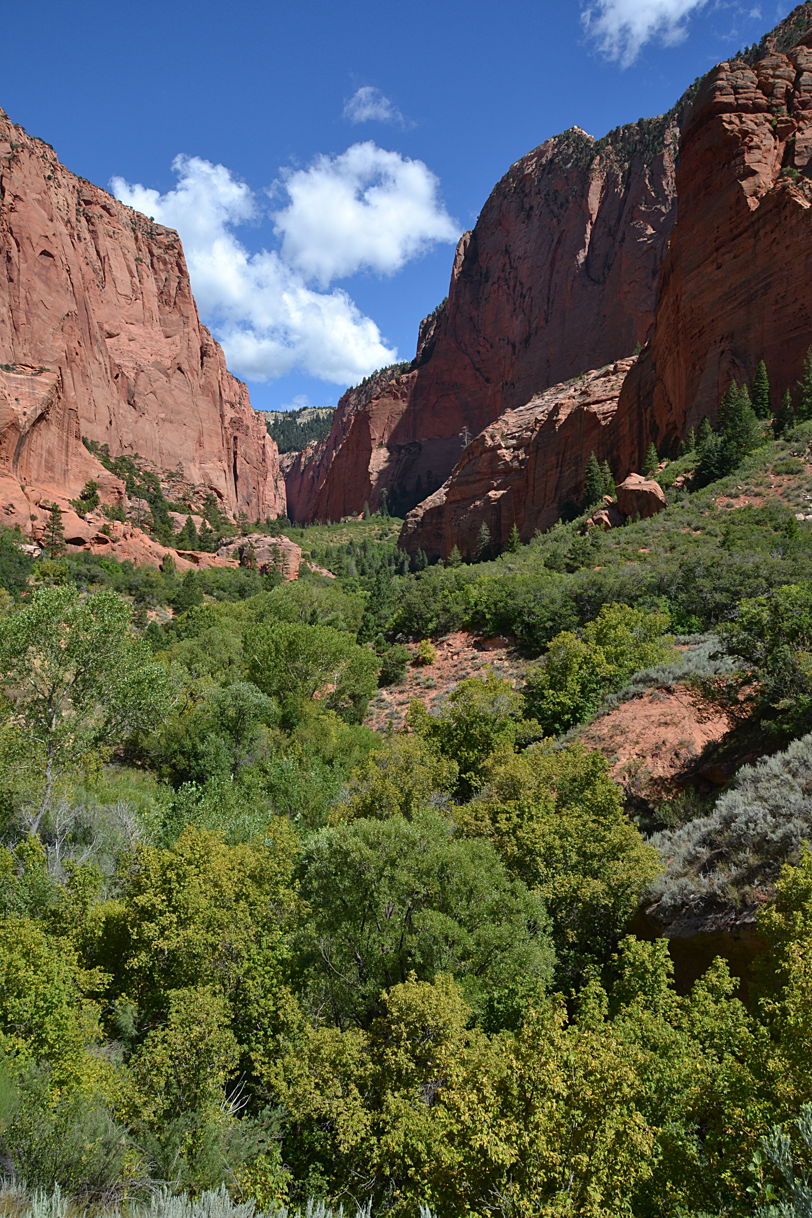 Kolob (Zion National Park)