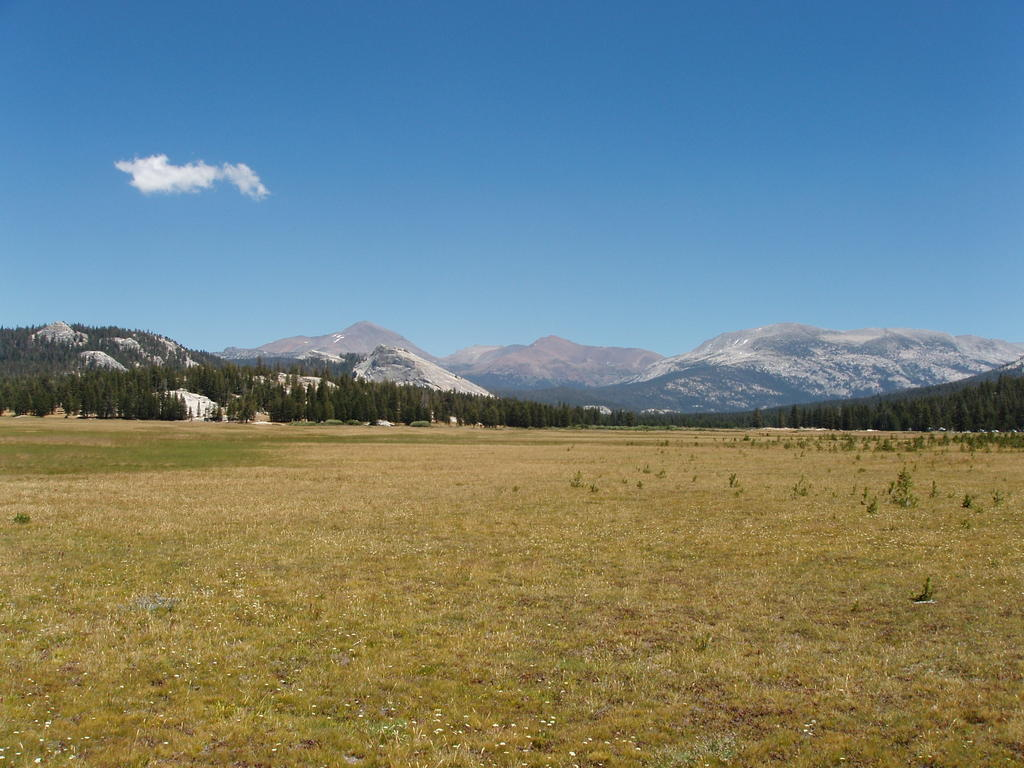 Tuolumne Meadows in August