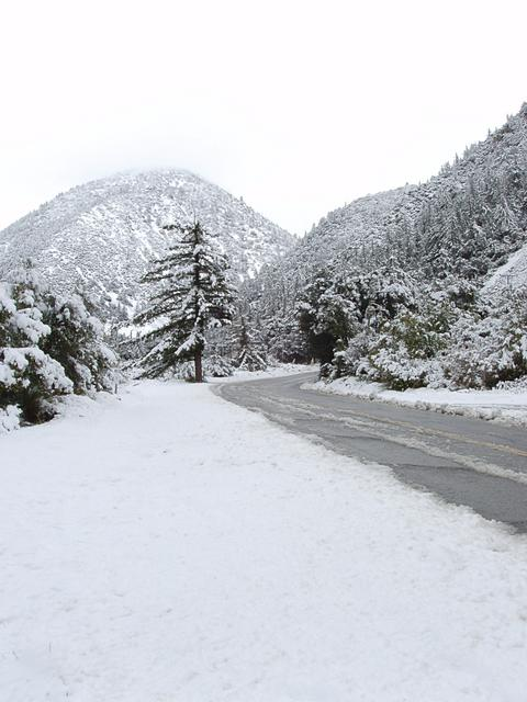 Snow on Mount Baldy Road