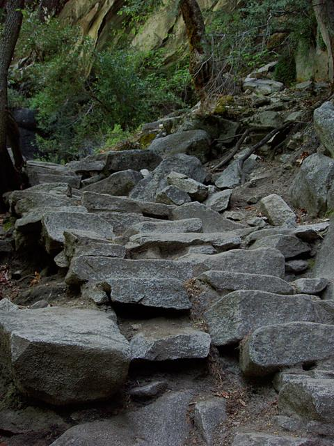 Steps on the Mist Trail