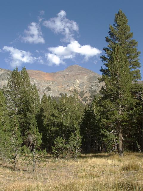 Mount Dana from the Gaylor Lakes Trail, Tioga Pass