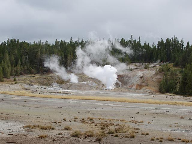 Ledge Geyser and Black Growler Steam Vent, Porcelain Basin, Norris