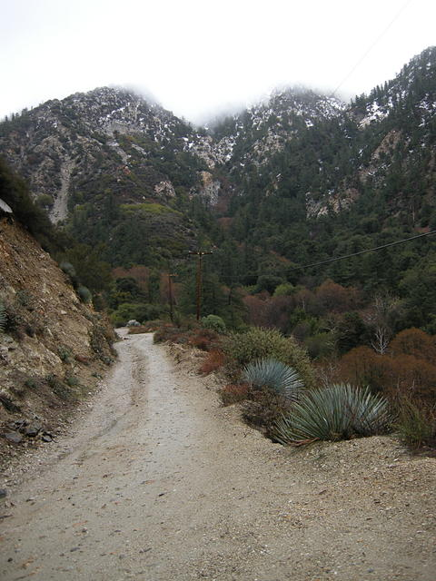Barrett Canyon Road