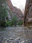 "Virgin River at ""The Narrows"" - Zion National Park"