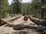 Closed Bridge at Yosemite Creek Campground