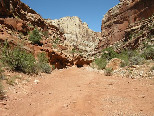 Canyon/trail at Capitol Reef National Park
